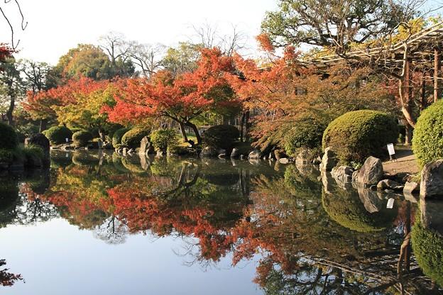 IMG_4481東寺(教王護国寺)・紅葉と水面に写り込む紅葉