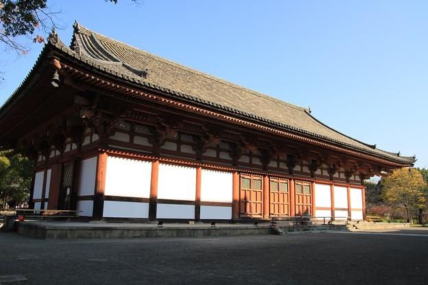 IMG_4519東寺(教王護国寺)・講堂(重要文化財)