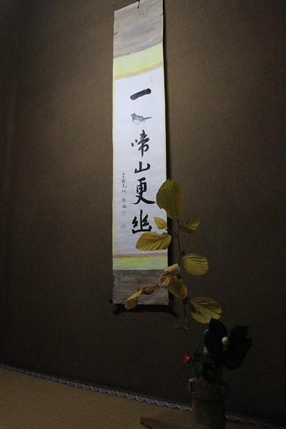 IMG_4688大徳寺・高桐院