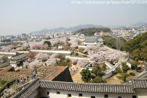 IMG_8150姫路城天守閣からの眺め