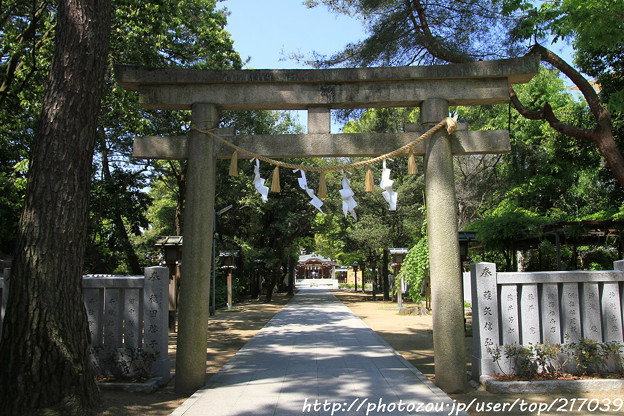 IMG_8238辛國神社・鳥居