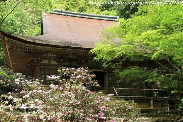 IMG_8347室生寺・本堂(潅頂堂)(国宝)