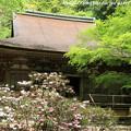 写真: IMG_8347室生寺・本堂(潅頂堂)(国宝)