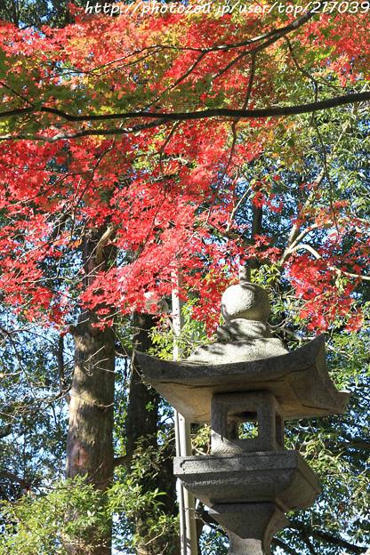 IMG_8718興志漏神社・灯籠といろは紅葉