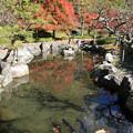 Photos: IMG_8740石道寺