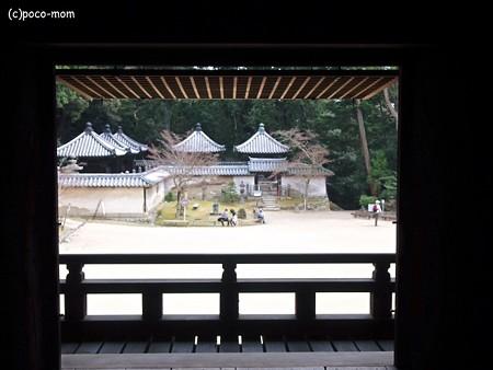 円教寺食堂から本多家廟屋をのぞむ2014年04月12日_P4120184