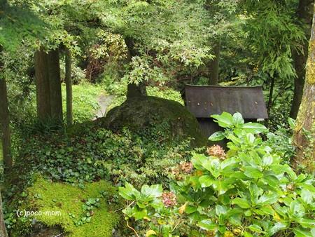 雷山雷神社 白蛇石と磐座PA120410