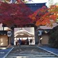 Photos: 高野山金剛峯寺 PB030571
