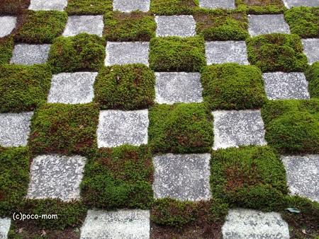 東福寺方丈北庭 小市松の庭P1110207