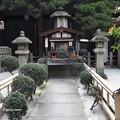写真: 瑞泉寺花まつり P4081076