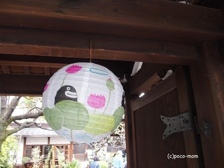 瑞泉寺花まつり P4081082