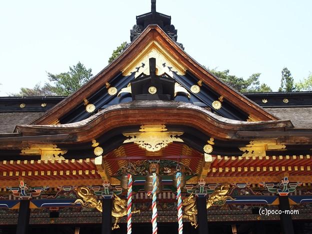 大崎八幡宮 ご社殿 拝殿 唐破風 P4290342