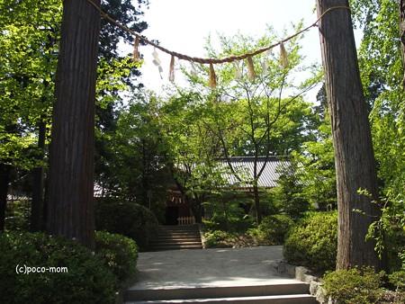 仙台 大崎八幡宮 P4290371