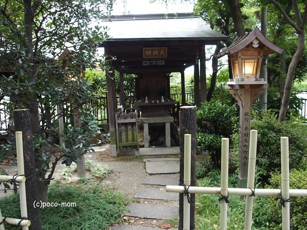 祇園白川 P8150641