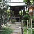 Photos: 祇園白川 P8150641