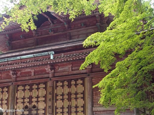 比叡山延暦寺 P8150704