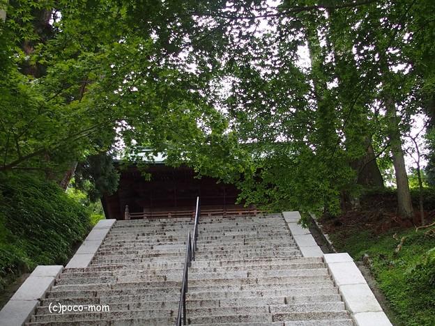 比叡山延暦寺 P8150725