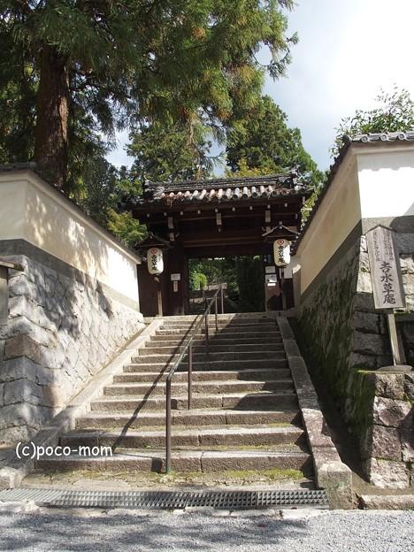 京都 安養寺 円山公園 PA140837