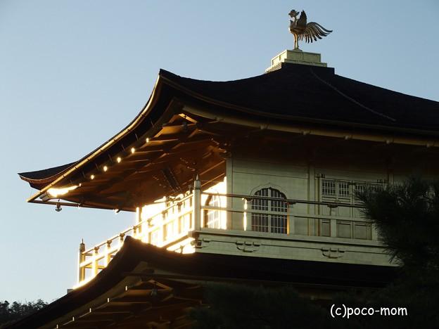 金閣寺 PA210966