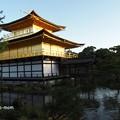 Photos: 金閣寺 PA210971