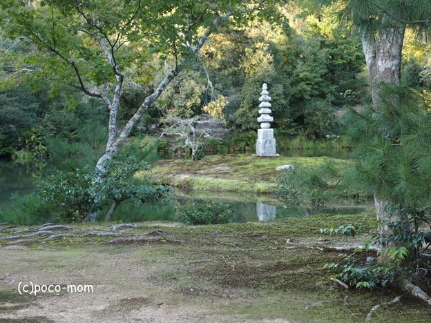 金閣寺 PA210972