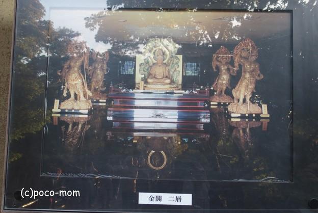 Photos: 金閣寺PA210969