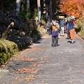 Photos: 菅浦集落 須賀神社 DSC_0740