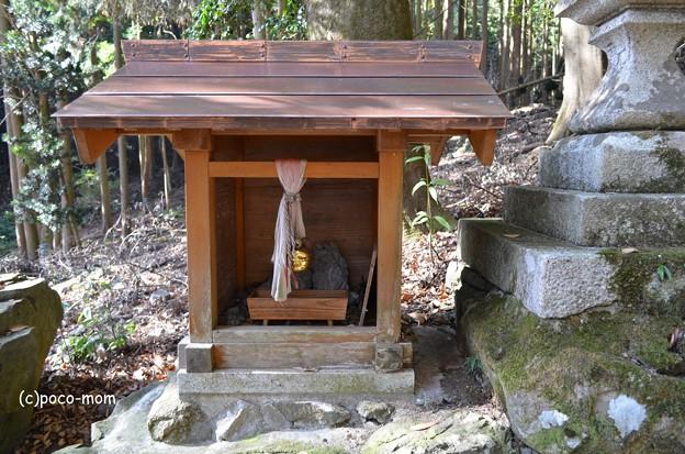 菅浦集落 須賀神社 DSC_0760