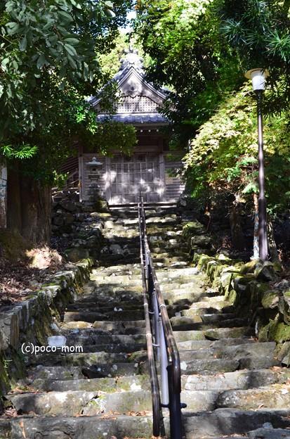 菅浦集落 須賀神社 DSC_0762
