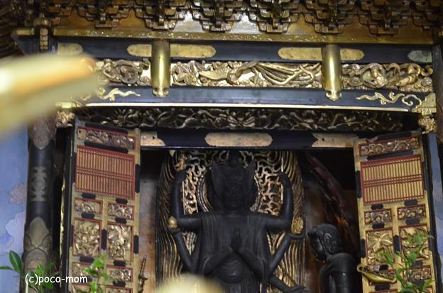 Photos: 徳圓寺 DSC_0810