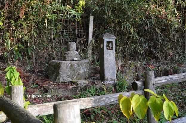 Photos: 神照寺 西浅井 DSC_0894