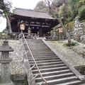 Photos: 知恩院御廟 P4140139