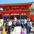 八坂神社 P4130001