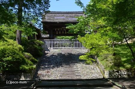 毘沙門堂 DSC_0292 (2)