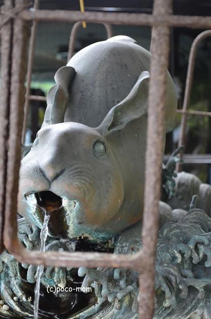 大津 三尾神社 DSC_0008