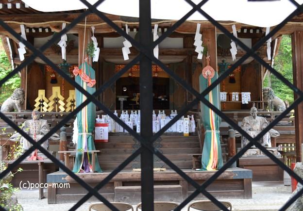 大津 三尾神社 DSC_0016