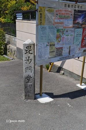 山科毘沙門堂 DSC_0224