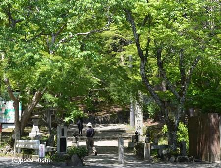 山科毘沙門堂 DSC_0229