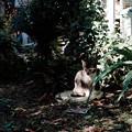 写真: 猫撮り散歩2010