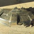 写真: TOPSUN TBC261D の 飛散防護カバー
