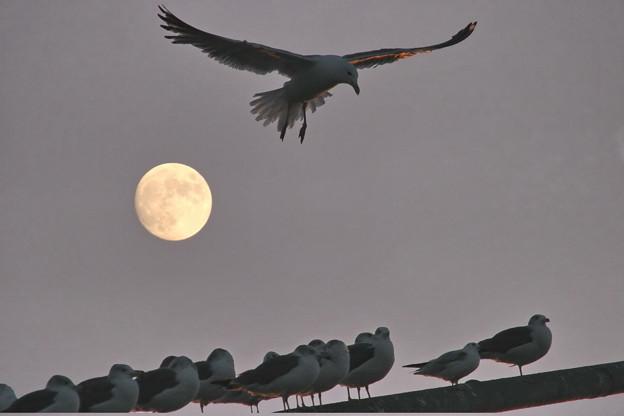 日が沈み満月が昇る時