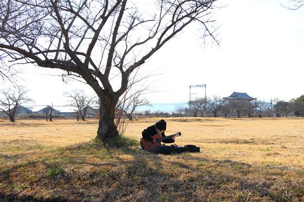 平城宮跡の吉他手