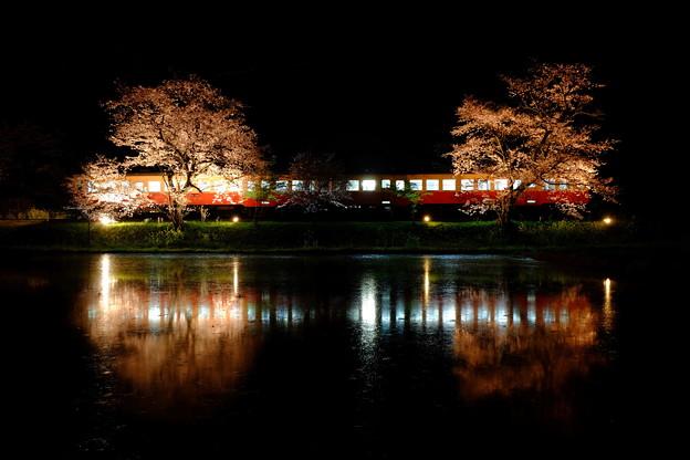 飯給夜桜 夜