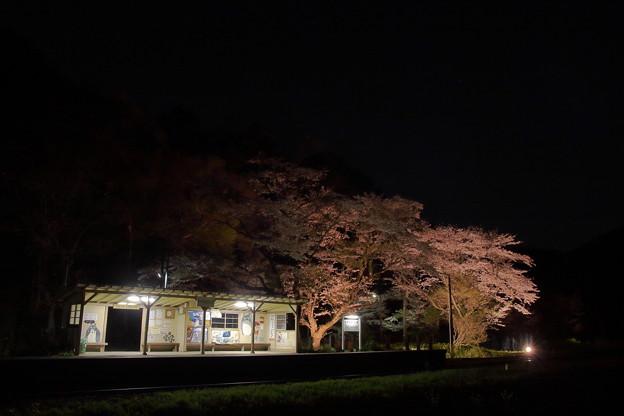 Photos: まほろば駅