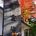 Photos: 慰霊碑