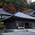 Photos: 雲巌寺 釈迦堂 獅子王殿