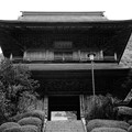 Photos: 雲巌寺 山門