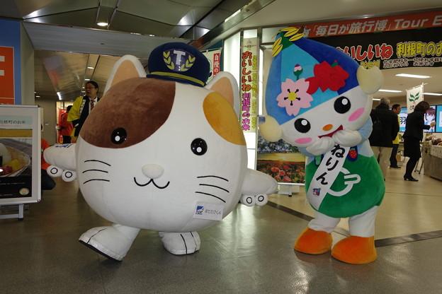 Photos: ゆるキャラ