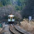 Photos: 冬枯れの鉄路