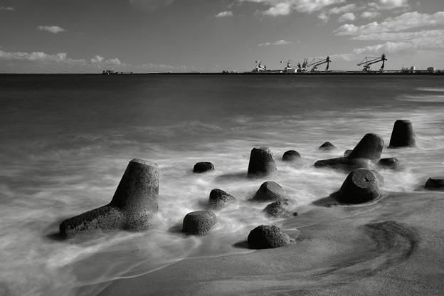 Photos: 海にいるのは浪ばかり